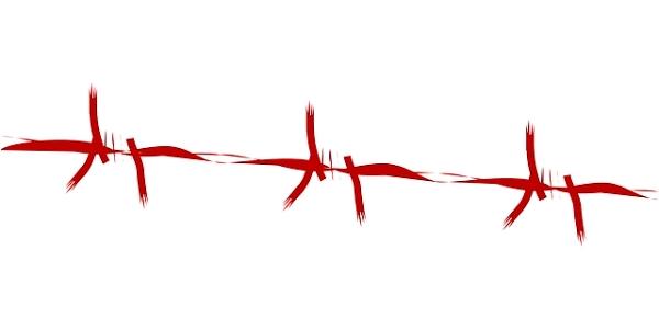 sange viata puls